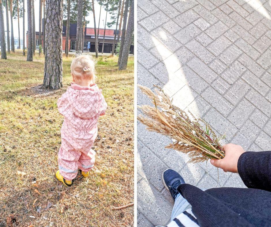 amas home by Jenni S. Viikkokatsaus: Kaatosadetta ja yksi neljävuotias